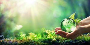 GreenAct_engagement_Sitour